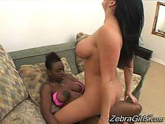 Zebra girls - Jada Fire , Angelica Sin